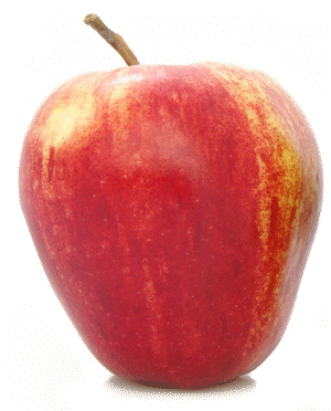 Fresh Wholesale Apples