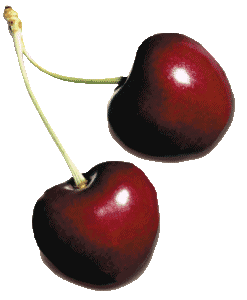 Fresh Wholesale Cherries