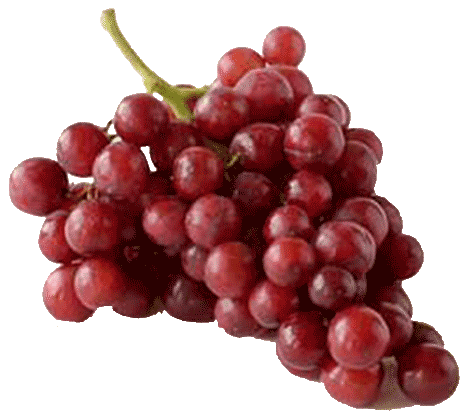 Fresh Wholesale Grapes